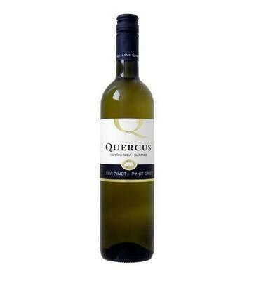 Vinska Klet-Quercus, Pinot Grigio, Slovenie