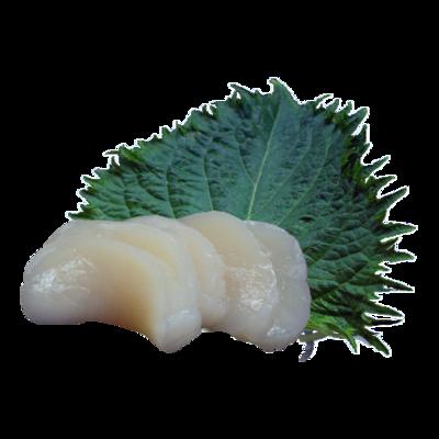 Sashimi di Hotategai / capesante