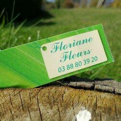 Floriane Fleurs Fleuriste à Niederbronn Les Bains, vente de bouquets, plantes intérieur et extérieur selon les saisons, compositions à thèmes et selon les événements