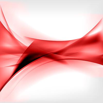 Bouquet du fleuriste couleur rouge/blanc