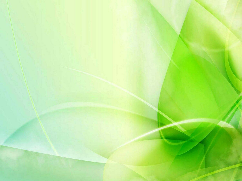 Bouquet du fleuriste couleurs blanc/vert