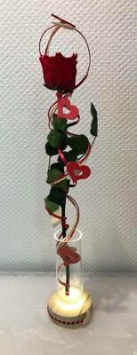 Rose éternelle rouge décorée dans un vase lumineux