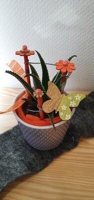 Cactus décorée