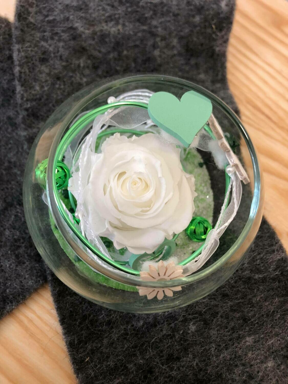 Rose éternelle dans un vase boule