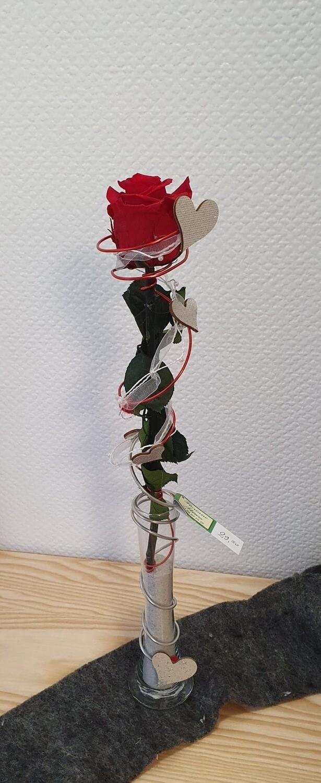 Rose éternelle rouge décorée dans un vase haut