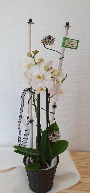 Midi orchidée décorée