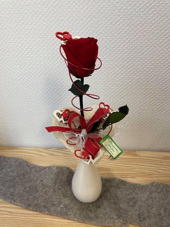 Rose éternelle rouge haute vase fin