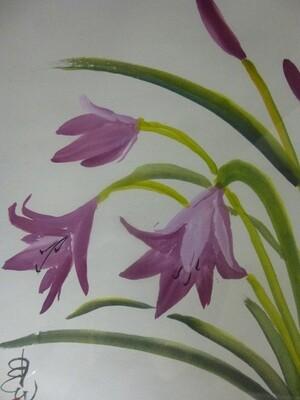 """Lillies"""