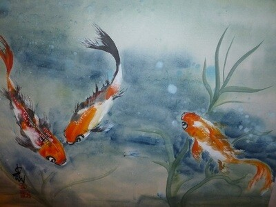 Three Koi