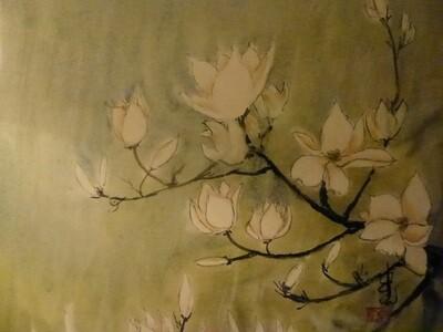 Magnolia in Rain
