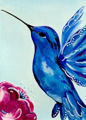 Sapphire Hummingbird