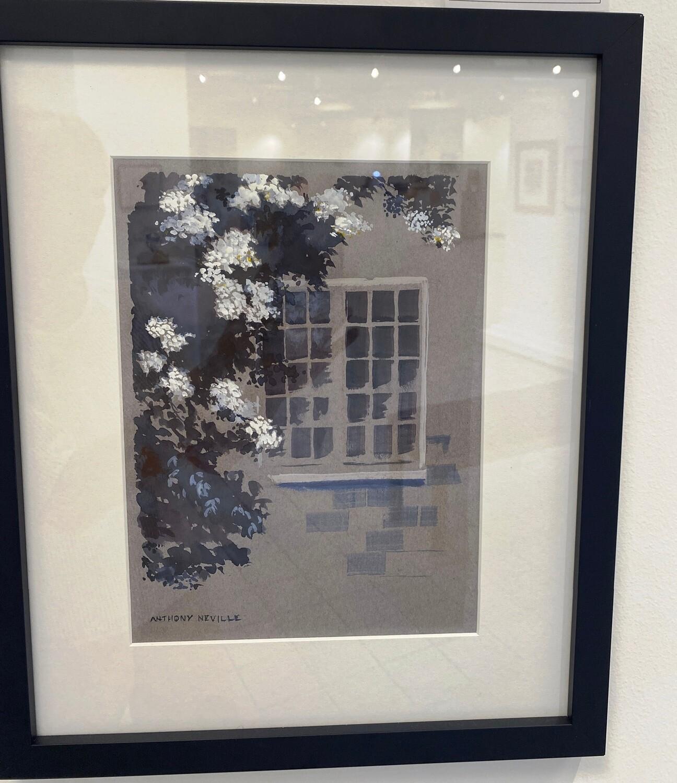 Arbor Window