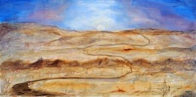 Trip Across the Desert