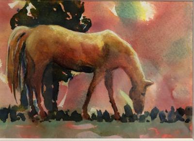 Sunlit Stallion