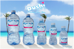DUSHI AWA Bottled water 12 x 20.3oz