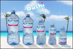 DUSHI AWA Bottled water 24 x 8oz