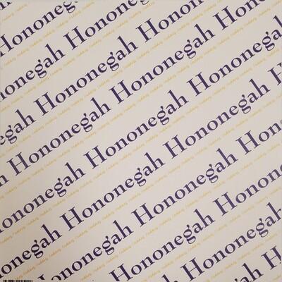 Hononegah Scrapbook Paper, Diagonal Pride, Purple & Gold