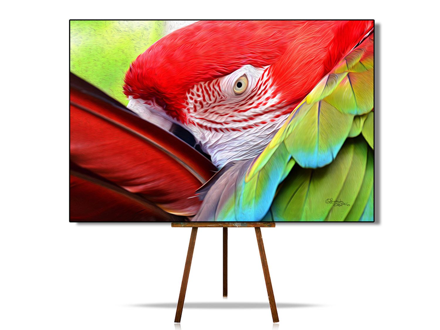 Scarlet Macaw Face | Parrot | Original Artwork | Digital Painting | Canvas Print | Wall Art | Bird Lover Gift | Wonderful Colors and Texture