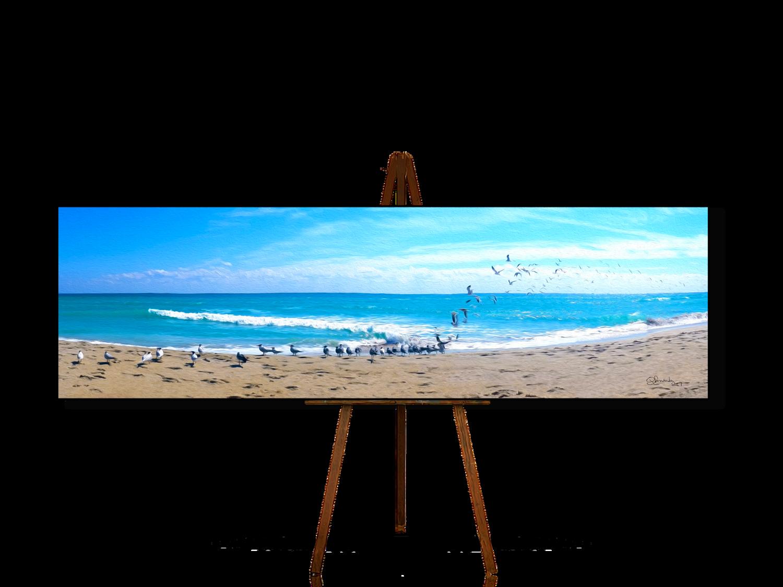 Seagulls flight in Hollywood Beach, Ocean Art, Beach Wall Art