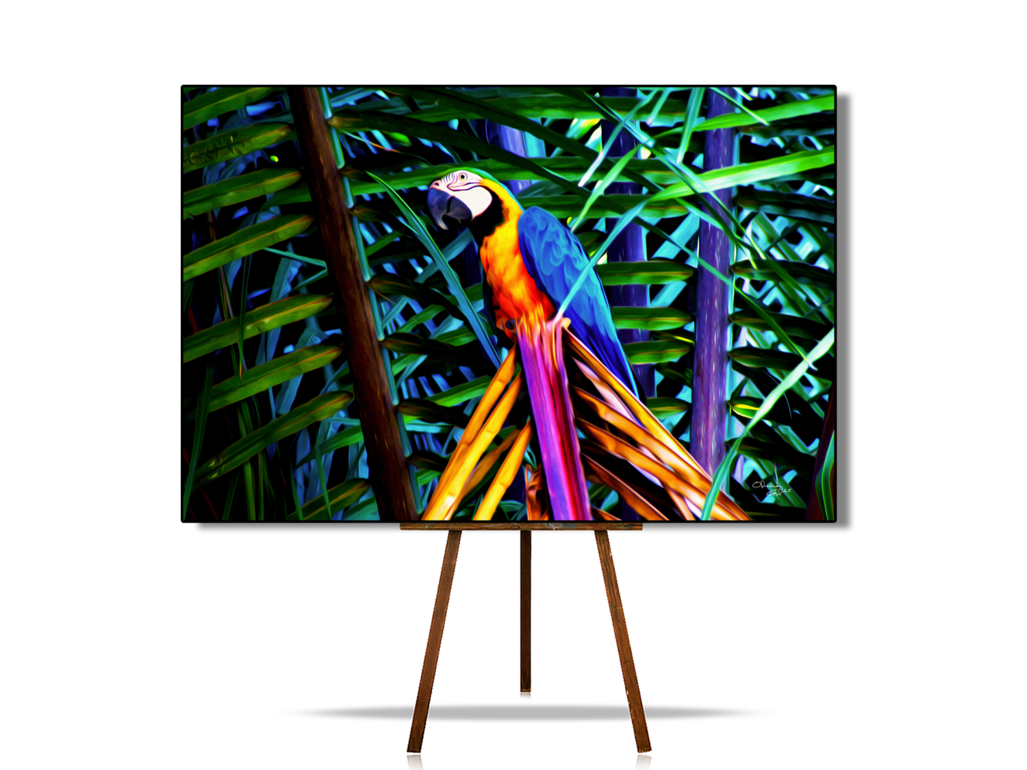 Blue and Yellow Macaw | Parrot | Original Artwork | Digital Painting | Canvas Print | Wall Art | Bird Lover Gift | Wonderful Colors and Texture