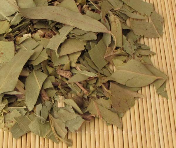 Eucalipto 500 gramos (Medio Kilo)
