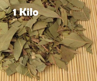 Eucalipto 1 kilo