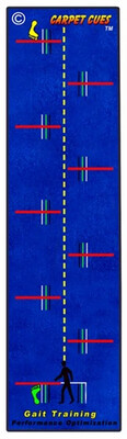 Gait Training Rug