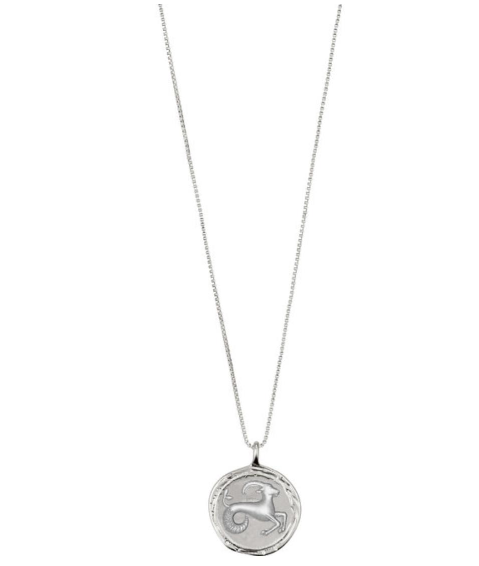 Horoscope Necklace Capricorn  Silver