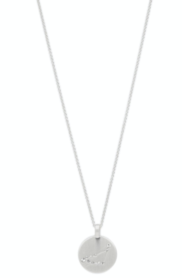 Star Sign Necklace Capricorn Silver (FINAL SALE - 70% Off)