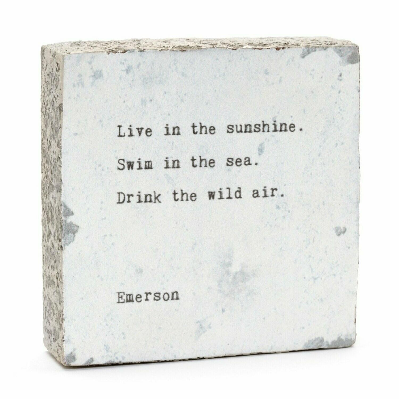 Little Gem - Live In The Sunshine