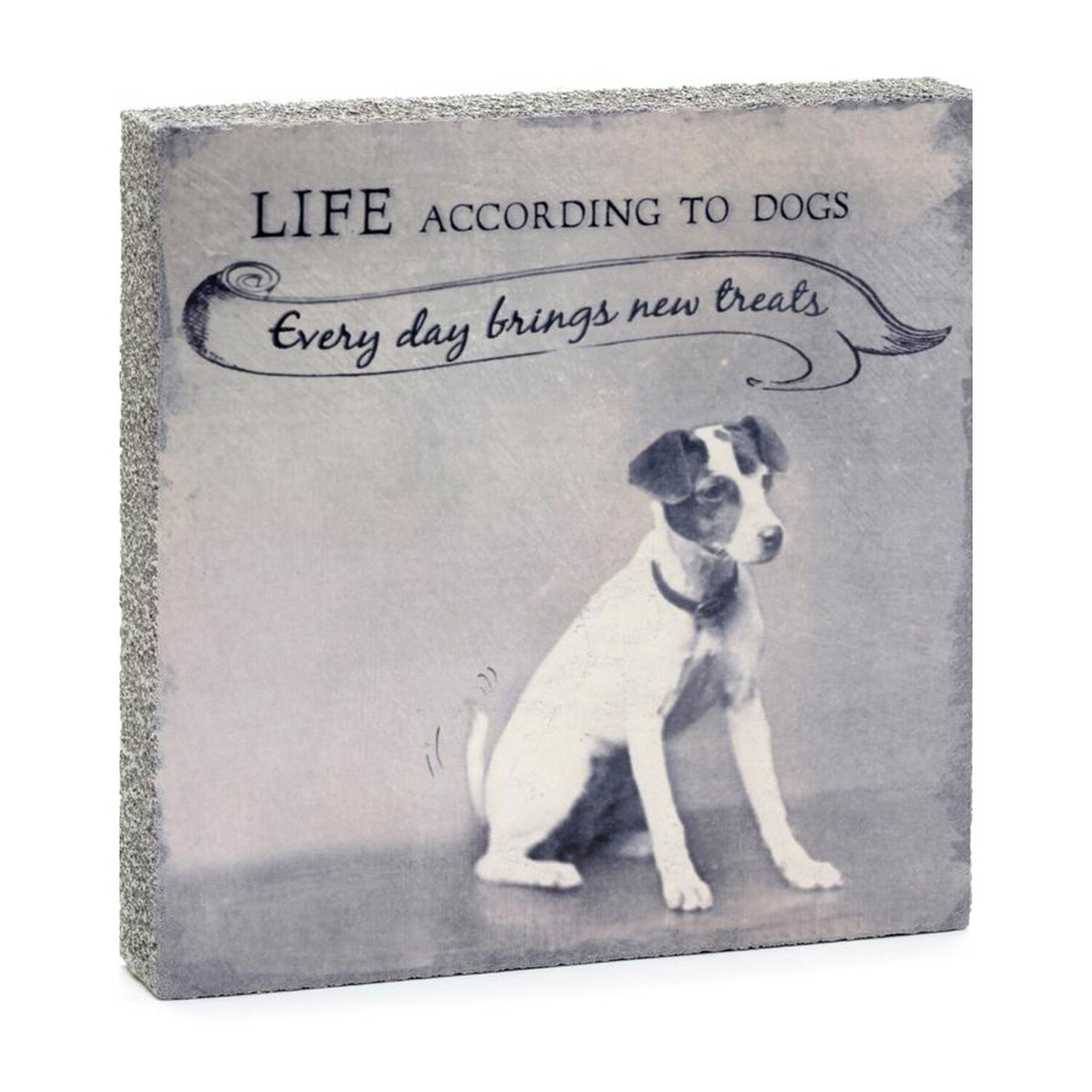 Lost & Found Art - Life Dogs