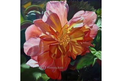 Begonia in Orange Cascade