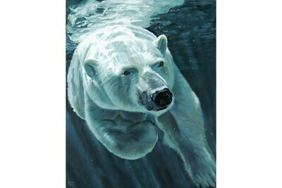 Just Below Surface, #2 in the Polar Bear Series