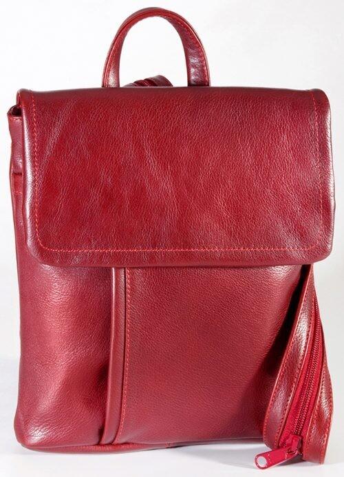 Bristol - Medium Backpack Tablet Friendly