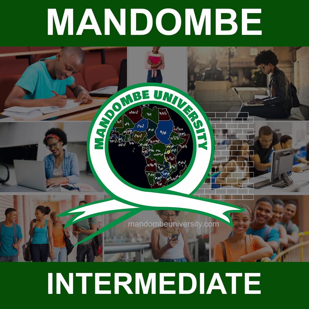 MANDOMBE - INTERMEDIATE LEVEL