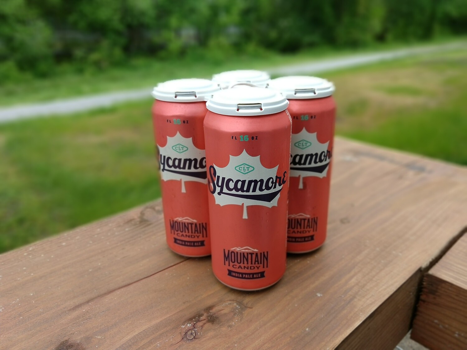 Sycamore Mountain Candy IPA (4pk)