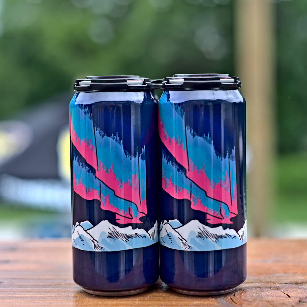 Wild Mind Artisan Ales Magnetic North Sour
