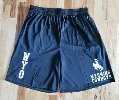 University of Wyoming Men's Shorts