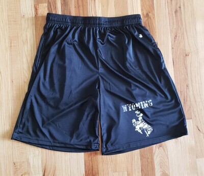 Men's Shorts Wyoming/Steamboat