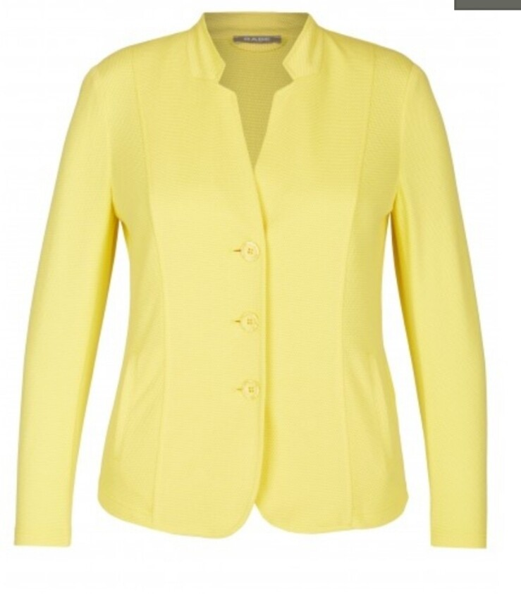 Rabe yellow jacket