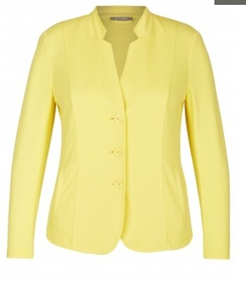 Rabe yellow jacket