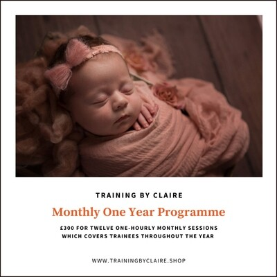 One Year Mentoring Programme