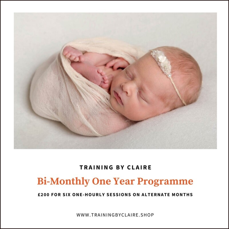 Bi-Monthly One Year Programme