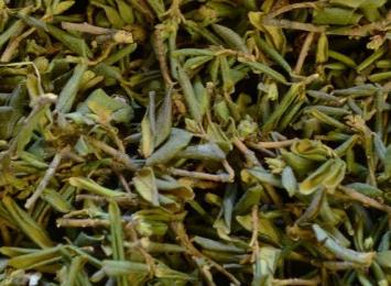 """""""Сааган дали"""" чай во время массажа 5 грамм"""