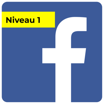 Campagne FB - Niveau 1