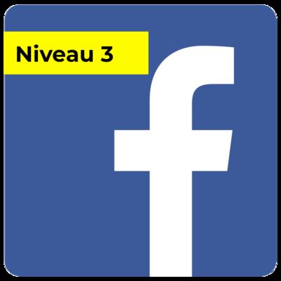 Campagne FB - Niveau 3