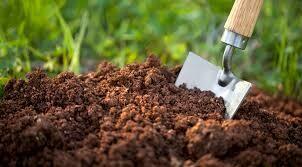 Organic Compost (Peat Free) 50 litres