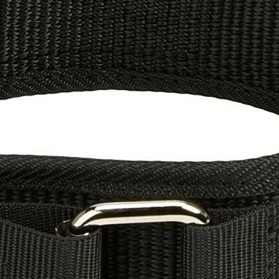 Harbinger Nylon Belt 4