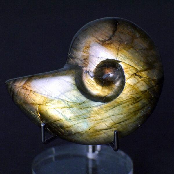 Labradorite Nautilus