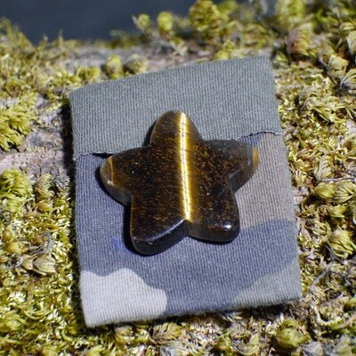 Tiger Eye Star with Small Courier